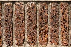 tekstury cementowa ściana Zdjęcia Stock