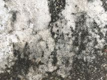 tekstury cementowa stara ściana Obraz Stock