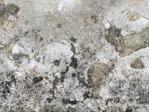 tekstury cementowa stara ściana Obrazy Royalty Free