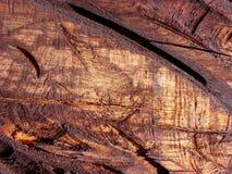 tekstury drewna Zdjęcia Royalty Free
