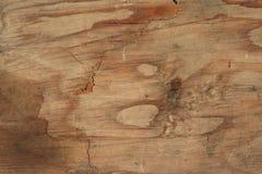tekstury drewno obrazy royalty free