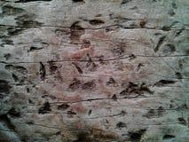 Tekstury drewno dla teksta lub wizerunku Obrazek kolejowa poduszka T Obrazy Royalty Free