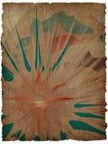 tekstury grunge kwiecisty tło z ramą Obrazy Royalty Free