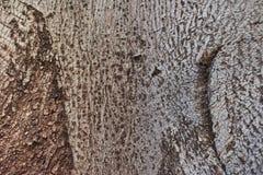 Tekstury kamień barwiąca glina zdjęcie stock