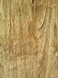 Tekstury na drewnie Zdjęcia Royalty Free