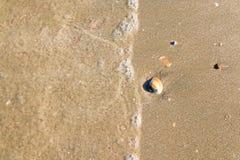 tekstury na plaży Obrazy Royalty Free