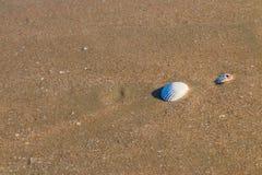 tekstury na plaży Obrazy Stock