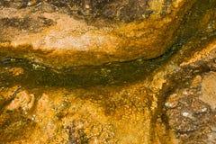 Tekstury Organicznie Deseniowy tło Obraz Royalty Free
