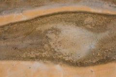 Tekstury Organicznie Deseniowy tło Zdjęcia Royalty Free