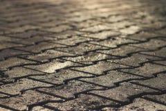 Tekstury płytka brukująca jezdnia Zdjęcie Royalty Free