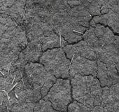 Tekstury pęknięcia ziemia od gorącej pogody Zdjęcia Stock
