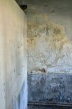 tekstury pleśniowa ściana Obraz Royalty Free