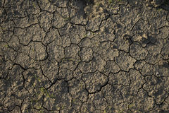 Tekstury powierzchni wzór sucha krakingowa ziemia Zdjęcia Stock
