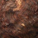 tekstury wilgotny stary drewno fotografia stock