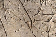 Tekstury zbliżenie cement masa Obrazy Royalty Free