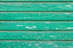 tekstury zielony drewno fotografia royalty free