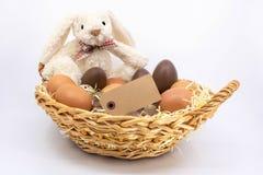 Tekstvak, Pasen-konijntje voor grafisch middel royalty-vrije stock afbeelding
