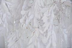 Tekstylny tła zbliżenie Biali draperii tkaniny kwiaty Ślubna tekstura, koronka Fotografia Royalty Free