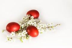 Teléfono móvil amarillo Huevos teñidos con la rama de la flor de cerezo Imagenes de archivo