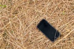 Teléfono móvil negro en la paja seca Foto de archivo libre de regalías