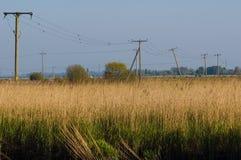 Telégrafo postes en Reedham Fotos de archivo