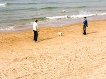 特拉维夫,以色列- 2017年2月4日:踢与狗的人橄榄球在Tel巴鲁克海滩在特拉维夫 库存照片