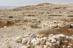 Tel Arad. Ancient city in the Negev desert in Israel Royalty Free Stock Photo