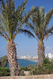 Tel Aviv. View from Jafo Royalty Free Stock Images
