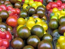 Tel Aviv carpet of tomato 2013 Stock Photography