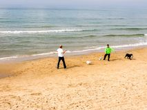 Tel Aviv, Israel - February 4, 2017: Men playing football with dogs on the beach of Tel Baruch in Tel Aviv royalty free stock photography