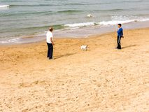 Tel Aviv, Israel - February 4, 2017: Men playing football with dogs on the beach of Tel Baruch in Tel Aviv stock photo