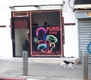 Tel Aviv, Israel Una demostración-ventana del café de Puro para fumar de la marijuana y el uso de setas alucinógenas fotos de archivo libres de regalías