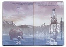 Pagina in bianco del passaporto di U.S.A. Fotografie Stock Libere da Diritti