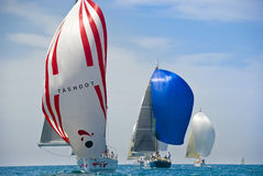 Tel Aviv, Israele - 15 maggio 2010: Concorrenza della tazza degli yacht di Ofek immagini stock libere da diritti