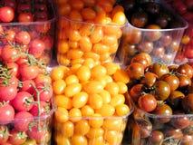 Tel Aviv körsbärsröda tomater 2011 Royaltyfri Fotografi