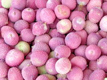 Tel Aviv Lichi Fruits  2012. Lichi Fruits on bazaar in Tel Aviv, Israel Stock Photo