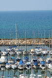 Tel aviv marina, israel Royalty Free Stock Photo