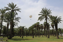 Tel Aviv new attraction TLV Hot Air Balloon in HaYarkon Park Royalty Free Stock Photography