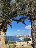 Tel-aviv promenade. Beautiful view on Tel-Aviv promenade throw the palms Royalty Free Stock Images
