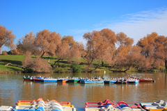 Tel Aviv Yarkon Park, Israel. A view of boats in Park Hayarkon lake in Tel Aviv, Israel Royalty Free Stock Photography