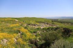 Tel. Gezer. Israël royalty-vrije stock afbeeldingen