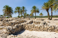 Tel Megiddo National park Royalty Free Stock Image