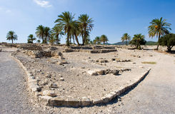 Tel Megiddo National park Stock Images