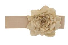 Tela beige de Rose en una correa Imagen de archivo