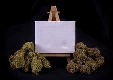 Tela in bianco con i germogli secchi della cannabis Fotografia Stock