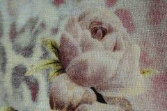 Tela com a cópia da rosa em cores deprimidos Fotos de Stock Royalty Free