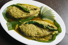 Tela d'Elisher jhal - un plat bengali Images libres de droits