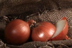 Tela da imballaggio dell'azienda agricola della cipolla fotografie stock