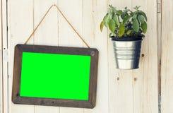 Tela da moldura para retrato e planta de potenciômetro verdes na superfície de madeira Png disponível imagens de stock royalty free