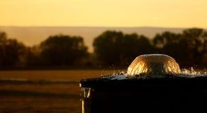 Tela de água da irrigação Fotografia de Stock Royalty Free